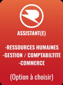 Assistant(e)