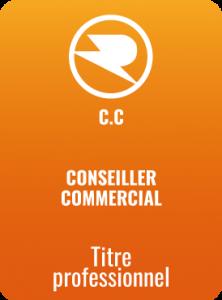 Carte-conseiller-commercial